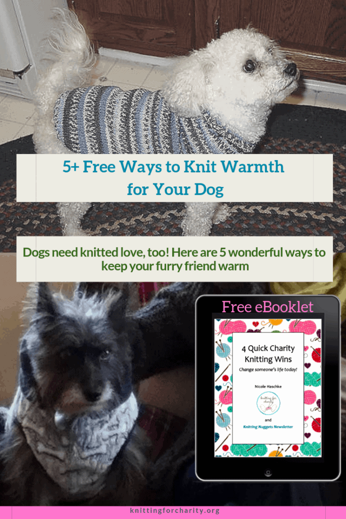 5+ Free Ways to Knit Warmth for Your Dog