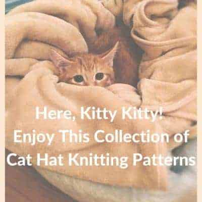 Enjoy This Fuzzy Collection of Free Knitting Patterns for Cat Hats