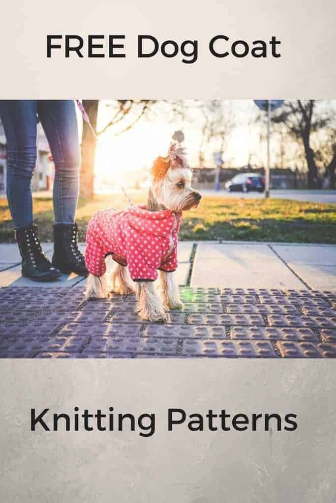 Keep Dogs (or a Cat) Warm and Happy with Free Knitting Patterns for Coats