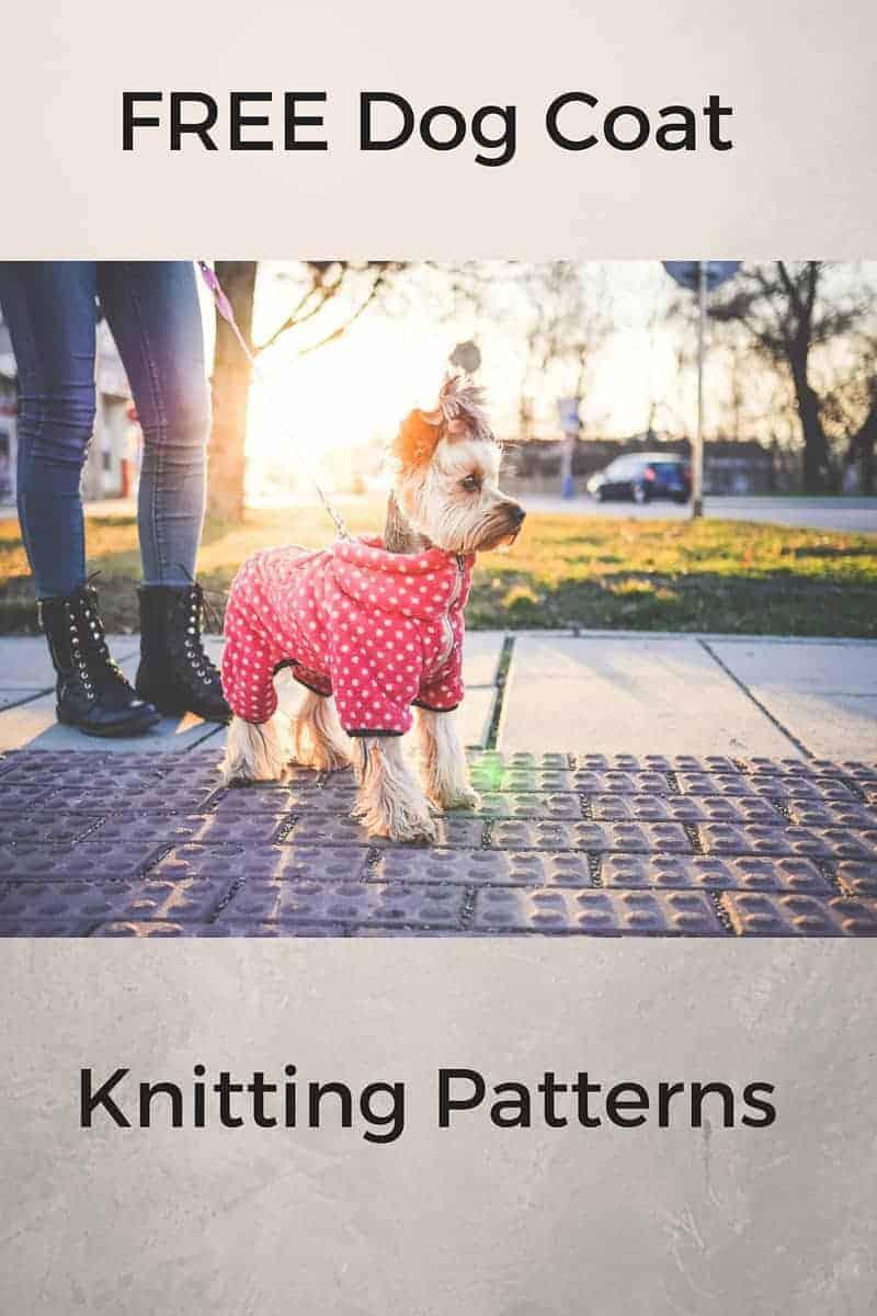 free dog coat knitting patterns
