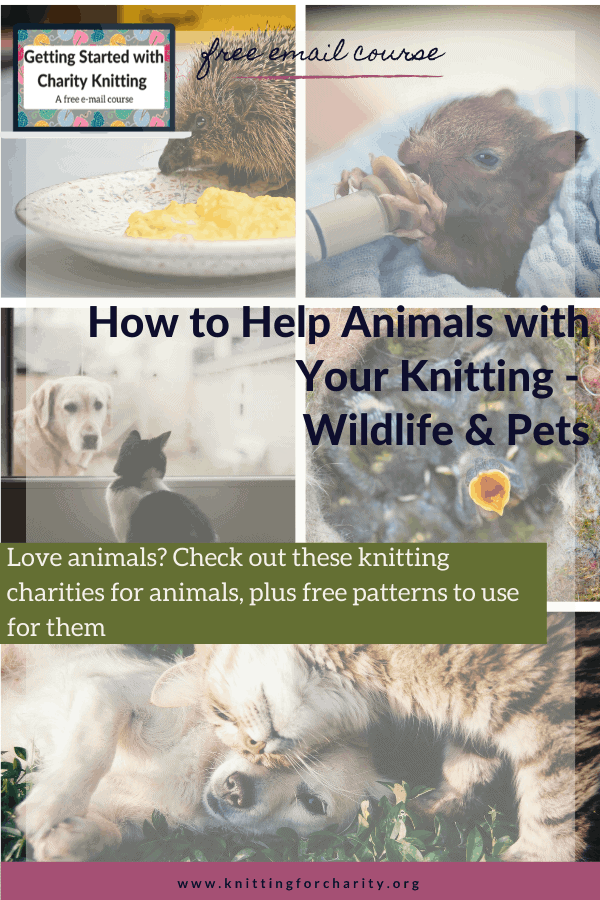 help animals with knitting