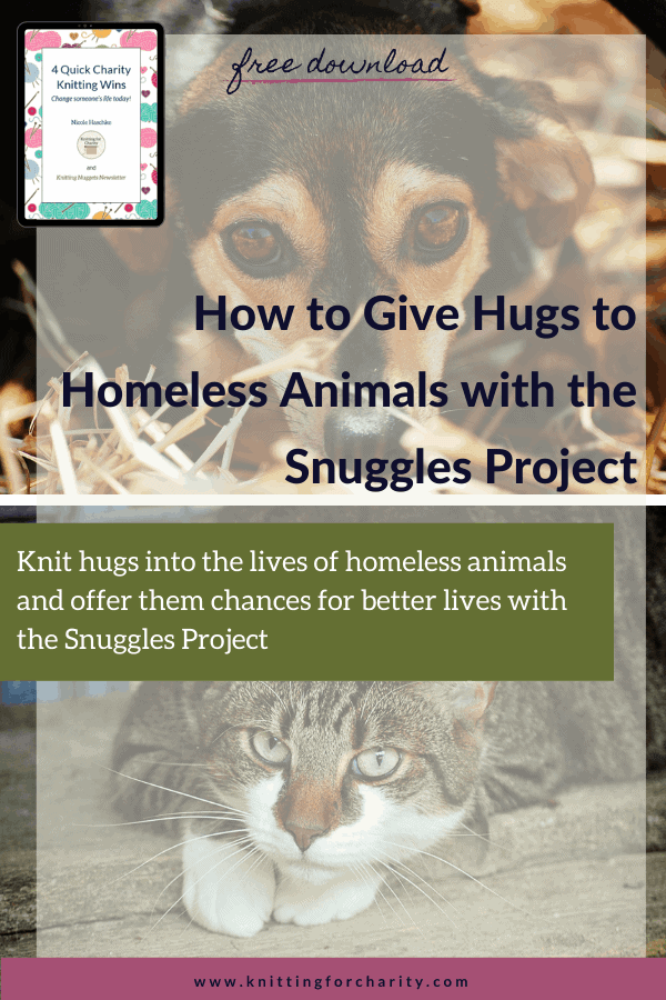 How to Give Hugs to Homeless Animals with the Snuggles Project